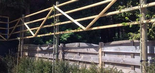 structure pour tilleul palissé