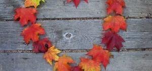 amour-automne-300x246.jpg
